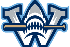 Sharks Road Trip Round-up, May 31