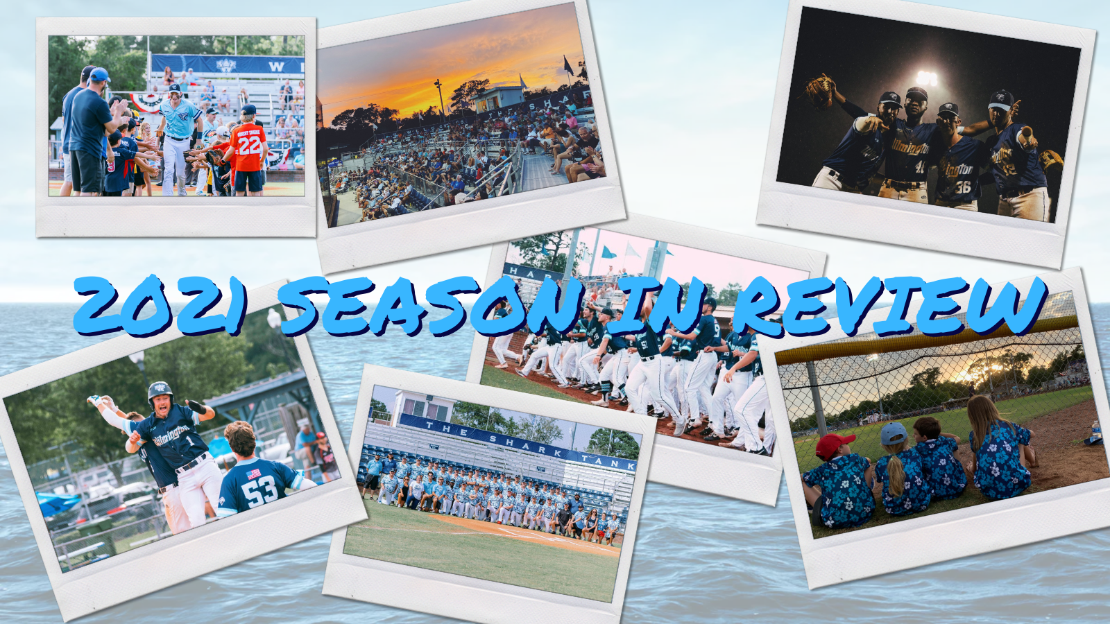 Sharks 2021 Season in Review